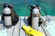 Бонайре считается одним из лучших мест для дайвинга на Карибах. // GettyImages
