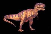 В Польше появился свой динозавр. // imponderabilia-dub.bloog.pl