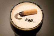 Искать кофейни для некурящих стало проще. // GettyImages