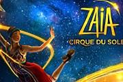 Cirque Du Soleil - это всегда захватывающее шоу. // conradaskland.com
