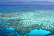 Большой барьерный риф - гордость Австралии. // GettyImages