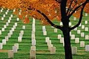 Знаменитое Арлингтонское кладбище // GettyImages