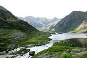 Больше возможностей наблюдения за природой появляется в Шотландии. // 1adventure.com
