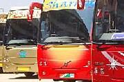 Автобусы Volvo купил комитет по транспорту Дубая. // volvo.com