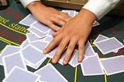 Десятки казино и парков отдыха займут тысячи гектаров. // ИТАР-ТАСС