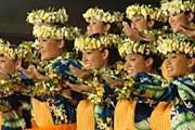Гавайцы и туристы будут танцевать. // msn.com