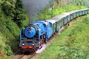 В замок гостей будет отвозить специальный поезд. // wild-cat-20.livejournal.com