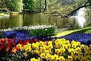 Ежегодно парк цветов посещают 800 тысяч туристов. // weltreport.de