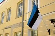 Посетить Эстонию будет проще. // А.Баринова
