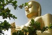 Начало мая - священный период для буддистов всего мира. // А.Баринова