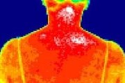 Инфракрасные сканеры контролируют температуру тела туристов. // mobiledevice.ru