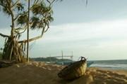 На пляжах Шри-Ланки зазвучит музыка. // А.Баринова