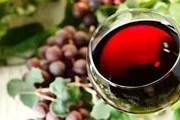 Лучшее швейцарское вино можно попробовать в Лаво. // Ghiotti