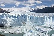 Ледник Perito Moreno – в списке природного наследия ЮНЕСКО. // wikimedia.org