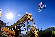 Комплекс будет располагать трассой для слопстайла. // whistlermountainbike.com