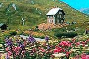 В саду - больше тысячи горных растений. // tourinfos.com