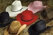 В экспозицию войдет более 500 шляп. // mrboots.com