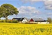 Отель расположен на этой ферме. // hyltebergagard.se