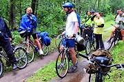 В Беловежской пуще туристам предложат велосипедные экскурсии. // bp21.org.by