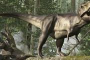 Другие музеи Греции обычно рассказывают только о динозаврах. // attractions.co.uk