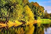 """На один день парк """"Лефортово"""" введет свою валюту. // friedrich.foto.mail."""