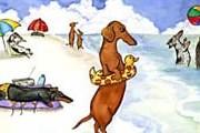 Пляж для собак открылся в Риме. // wiener-dog.com