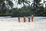 Пляжи Занзибара признаны одними из лучших в мире. // Travel.ru