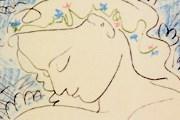 На выставке представлены графические работы Пикассо. // elementy.ru