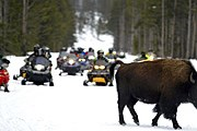 Туристы на снегоходах в Йеллоустоне // AP / Craig Moore