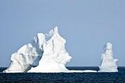 К берегам Новой Зеландии айсберги доставили океанские течения. // Dale Wilson