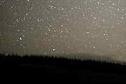 Звездное небо над Galloway Forest Park // guardian.co.uk