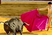 В Каталонии запретят корриду. // art2live4.eu