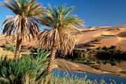 Ливия планирует увеличить поток туристов. // Frank Krahmer