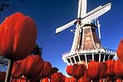 Нидерланды хотят за 5 лет вдвое увеличить турпоток из России. // hogen-mogen.ru