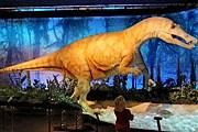 На выставке представлены модели динозавров в натуральную величину. // lesechos.fr