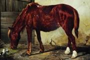 Н.Е. Сверчков. Рабочая лошадь. // Государственная Третьяковская галерея