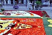 Для создания ковра используется порядка 700 тысяч цветов. // eastbelgium.com