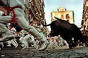 Участников забега быков призывают к осторожности. // wordpress.com