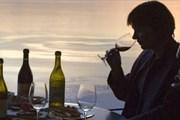 Швейцария - страна знаменитых вин. // lake-geneva-region.ch