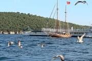Принцевы острова - популярное направление однодневных поездок из Стамбула. // Wikipedia
