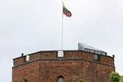Замок Гедиминаса с развевающимся флагом является символом Литвы. // K.Čachovskio, DELFI