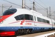 """Скоростной поезд """"Сапсан"""" // Travel.ru"""