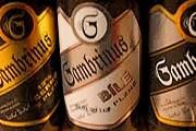 Посетители узнают секреты приготовления пива. // beerblog.room515.co.uk