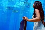 Брачную ночь можно провести под водой. // widelec.org