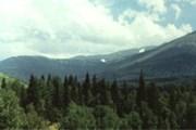 В Западно-Алтайском заповеднике - три природные зоны. // klimovka.kz
