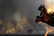 Высота пламени достигает 10 метров. // EPA/Fernando Bizerra