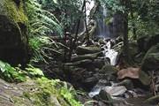 Природа - главная достопримечательность Коста-Рики. // Travel.ru