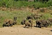 У туристов есть шанс стать первооткрывателями Экваториальной Гвинеи. // puretravel.com