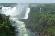 Миллионы туристов приезжают посмотреть водопады Игуасу. // Travel.ru