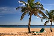 Пляж на Тенерифе // iStockphoto